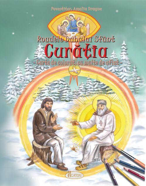 Roadele Duhului Sfânt - vol. 1. CURĂȚIA. - Amalia Dragne (CARTE)