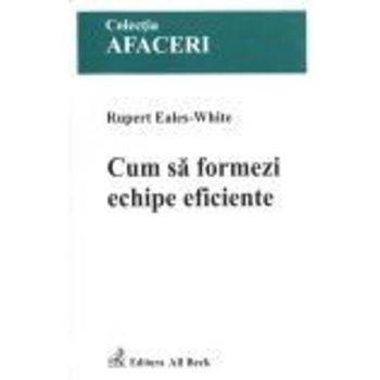 Cum sa formezi ECHIPE eficiente