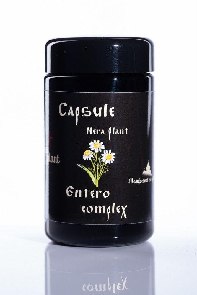 Capsule Entero-complex (100 capsule) -   *** (Naturiste)