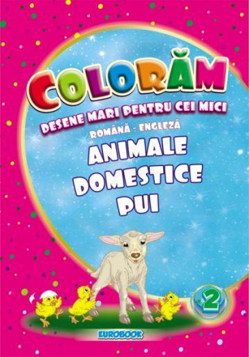 Carte de colorat cu desene mari: Animale domestice pui B5