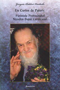 Un Cuvios de Pateric. Părintele Protosinghel Nicodim Bujor Cernicanul  - Georgeta Bidilica-Vasilache (CĂRTI)