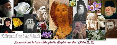 Gingășie și sfințenie - portretul unui sfânt