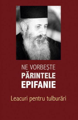 Ne vorbeste parintele Epifanie Vol. II - Arhim. Epifanie Theodoropulos (CARTE)
