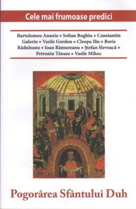 Pogorarea Sfântului Duh - Marius Vasileanu (CARTE)