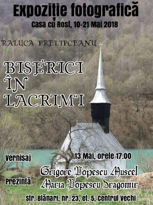 O expoziție-manifest: Salvați bisericile de pe Valea Arieșului!